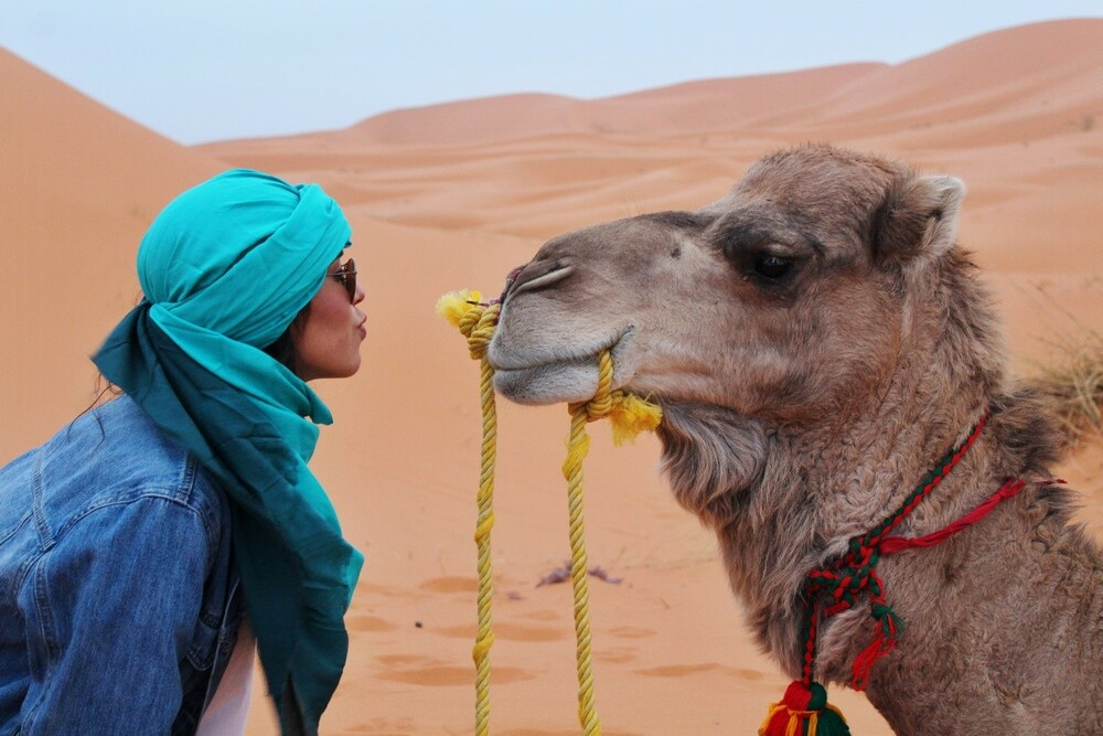 paseo en Camel Ride in tenerife