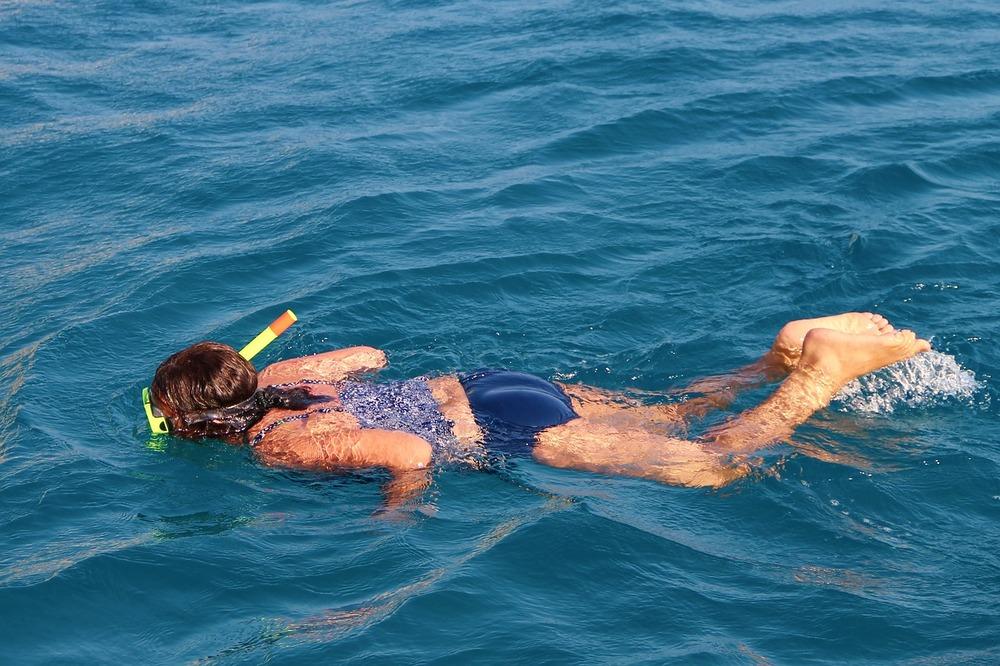 Snorkel with turtles in Tenerife